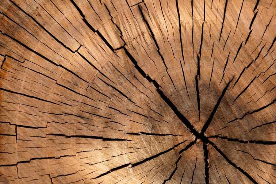 quemador de incienso de madera