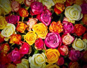 Incienso rosas